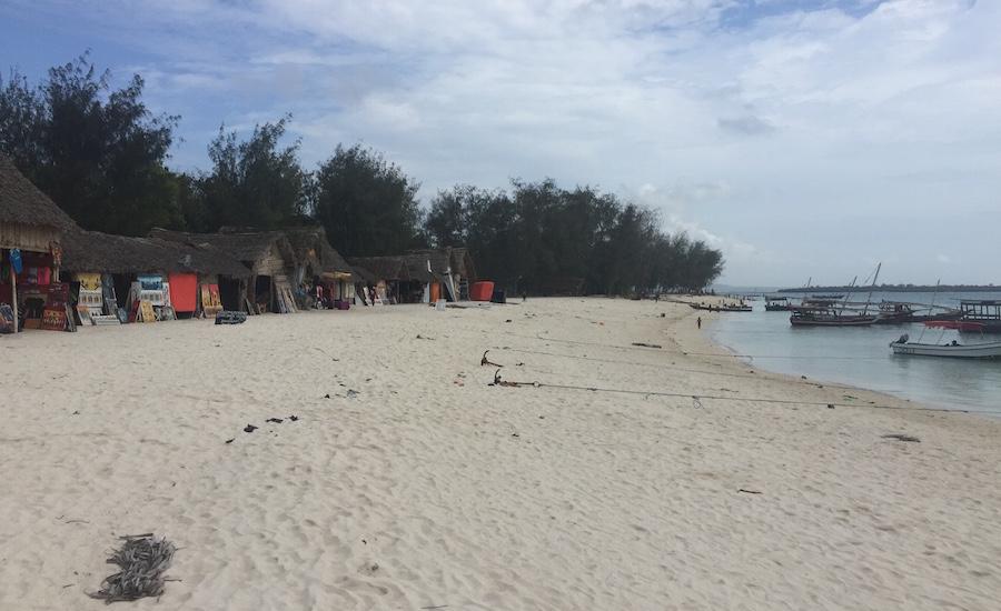 Tanzania Zanzibar strand boder