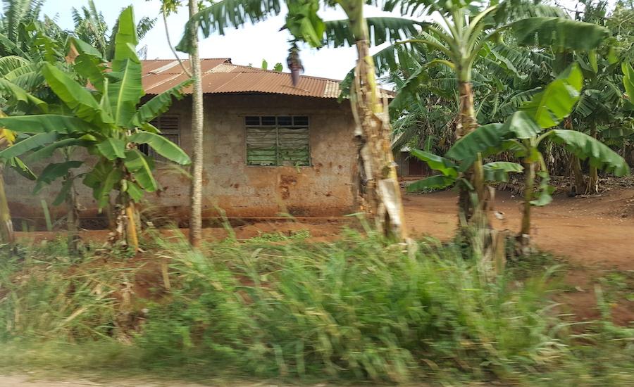 Tanzania Zanzibar hus