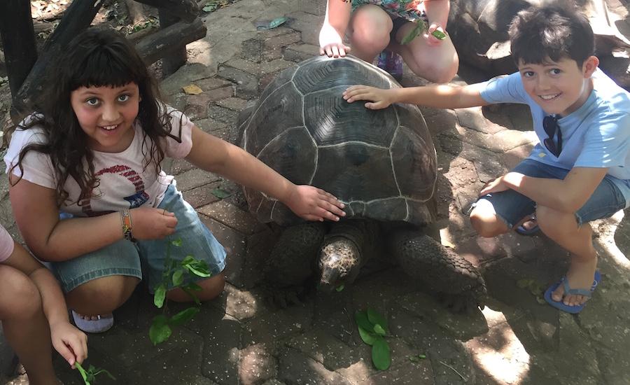 Tanzania Zanzibar rejser til zanzibar prison island turtle