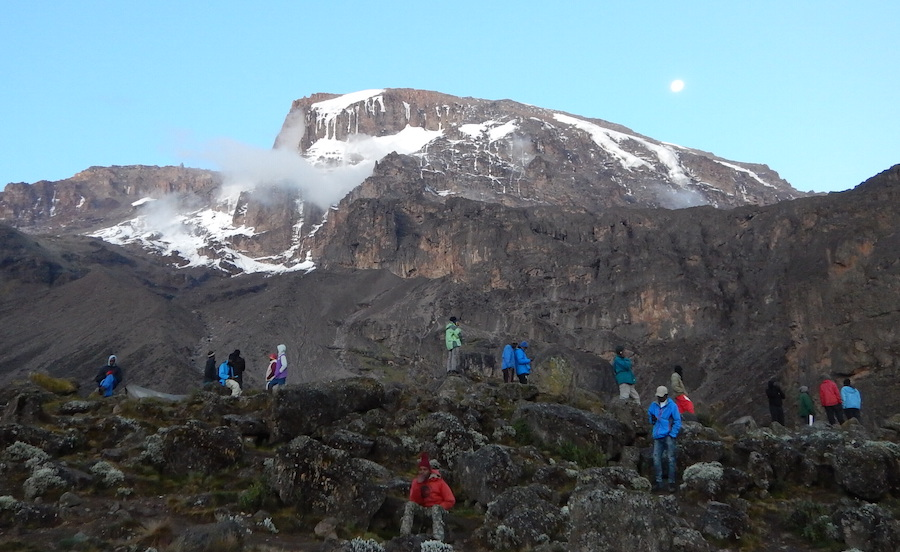 Tanzania Zanzibar safari rejse ngorongoro kilimanjaro glimt af toppen