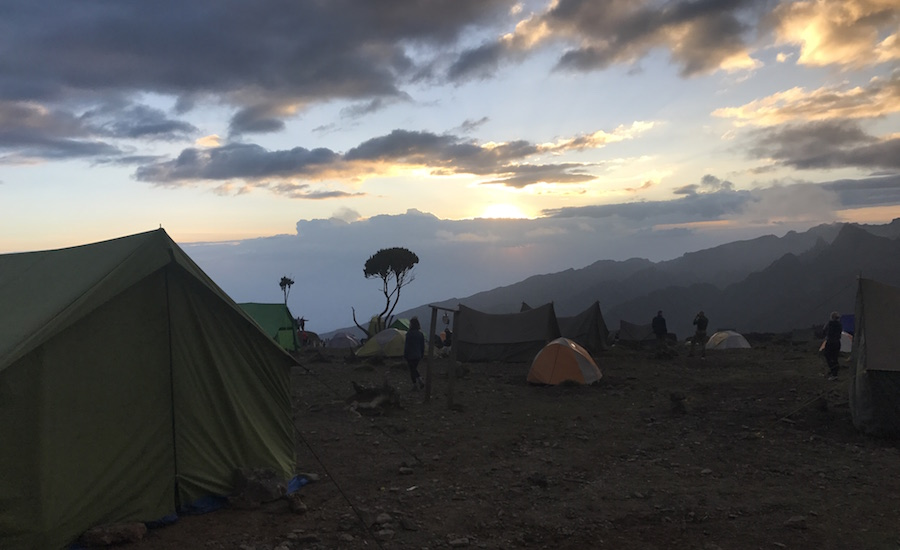 Kilimanjaro, safari og Zanzibar