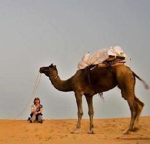 Egypten og Dubai kombination