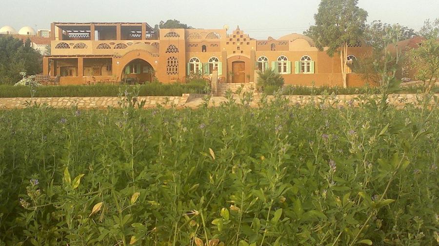 Egypten Abu Simbel Eskaleh_Nubian_Ecolodge_surroundings