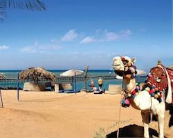 Hurghada 1 uge