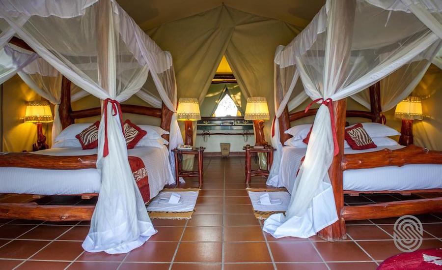 Zanzibar Tanzania Mbuzi room