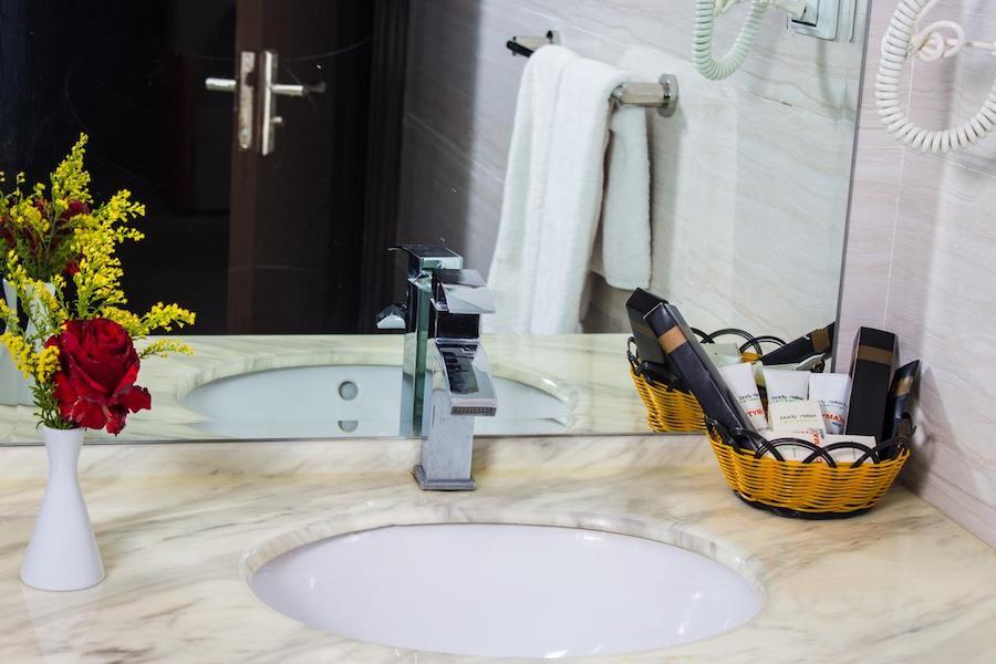 Egypten rejse Citymax-Aswan-bathroom