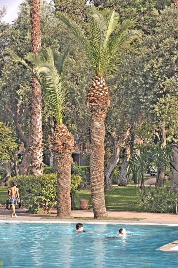 Marrakech - Hôtel Farah