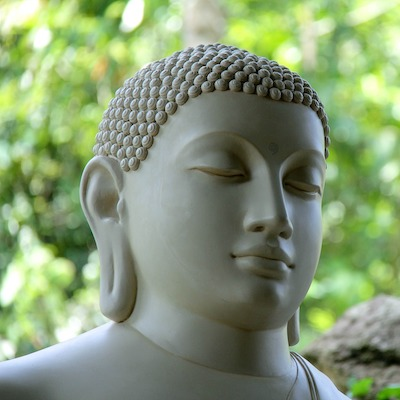 På eventyr i Sri Lankas natur og kultur